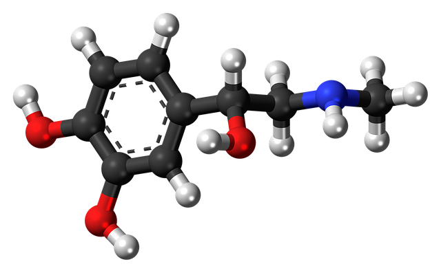 Adrenaline produced during homeostasis